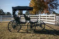 We provide off-site carriage rental as well.